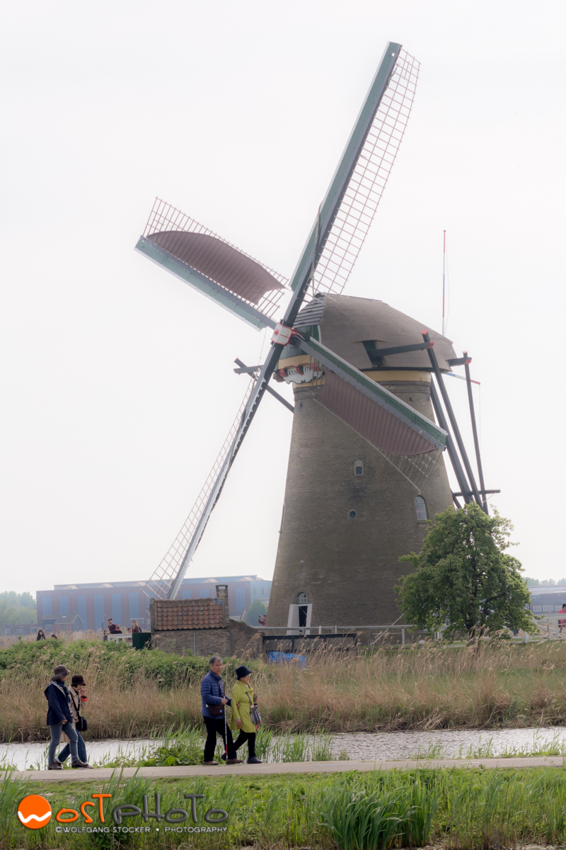 Windmill in Kinderdijk in the Netherlands