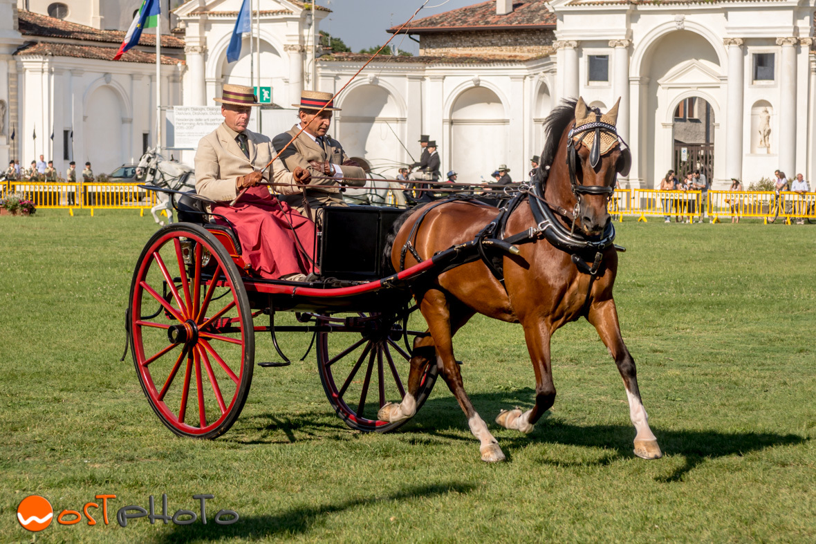 Competition of Tradition Attack at Villa Manin, Friuli/Italy