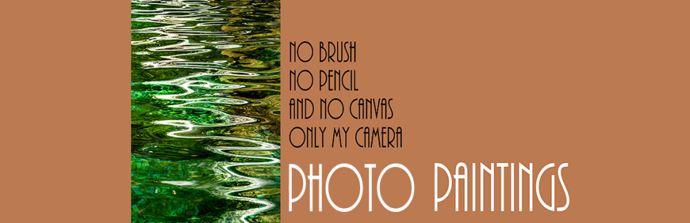 Banner wostphoto categorie spotlight_camera_paintings