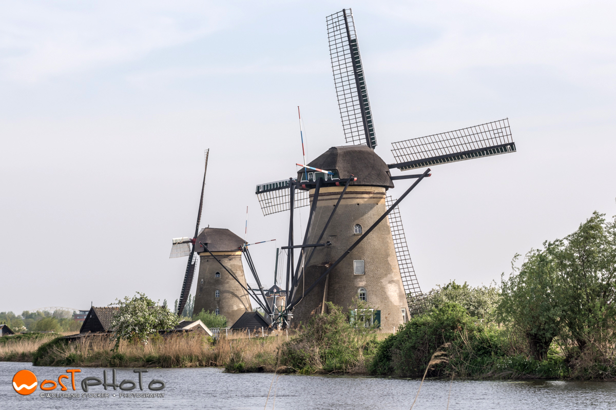 Windmills in Kinderdijk in the Netherlands